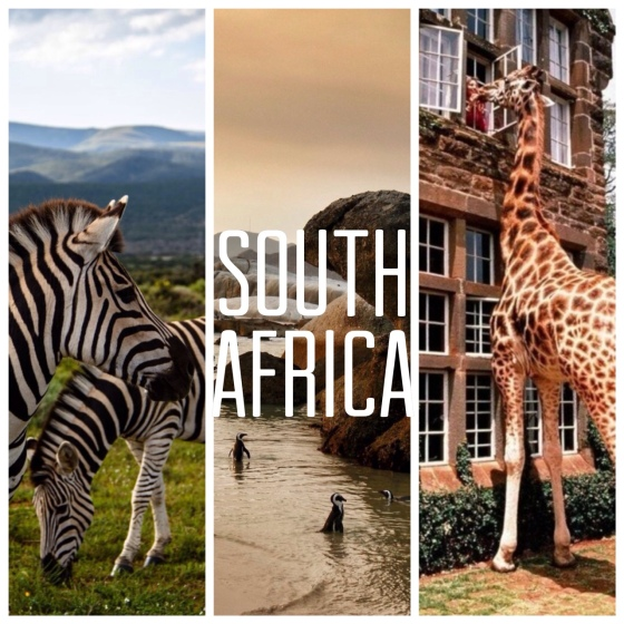 travel South Africa