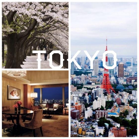 travel Tokyo